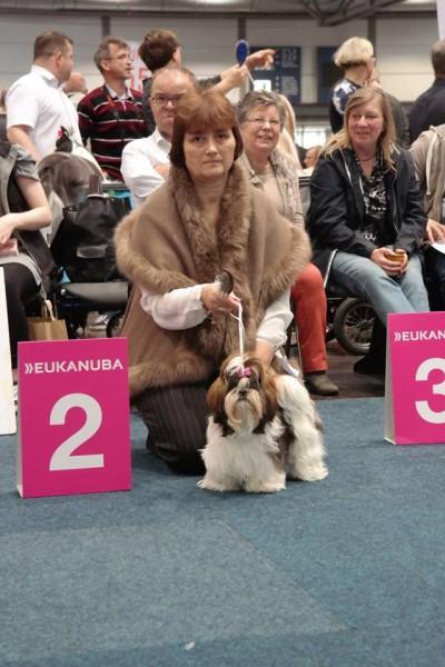 Diana JIPE Bohemia - puppy class - II.místo