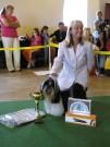 třída otevřená SECRET LIGHT PREMIUM BOHEMIA  V 1 CAC nejlepší pes