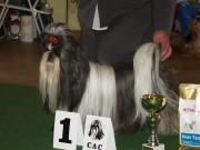 třída vítězů BELMONDO MERLOT  V1 CAC